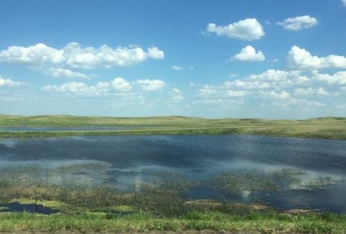 Saskatchewan field with water